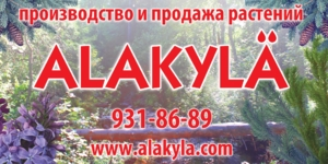 Питомник Алакюль